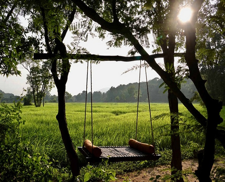 065425082201Swingbed-in-front-of-paddy-fields-at-Ulpotha.jpg