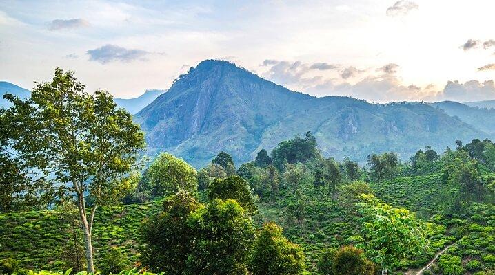 072006Srilanka.jpg